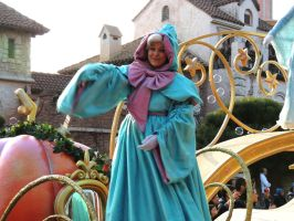 Fairy Godmother by bellesprince