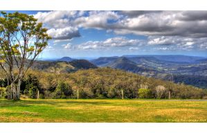 Lamington National Park 2 by aragwen