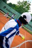 Seigaku Fight - Prince of Tennis by KashinoRei