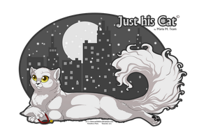 Just his Cat by Sachishiro