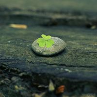 lucky stone. by simoendli