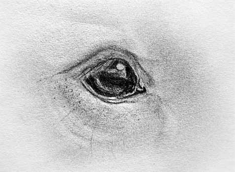 Eye Sketch by Bright-Button