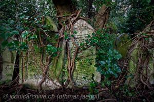 Highgate Cemetery 2 by iconicarchive