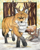 Golden Fox by MorRokko