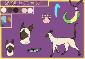 Request - Salem Character Sheet by ChibiCorporation