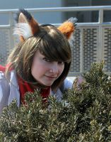 Fox McCloud in the bushes by DollCosplay