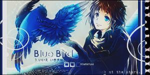 Blue Bird by ModokiMokona