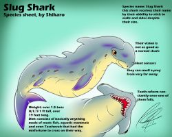 Slug shark species sheet by ShikkaTL