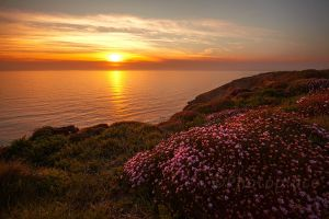 lovely cornwall 03 by photoplace
