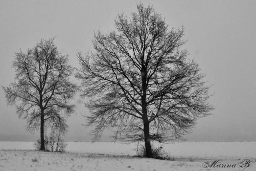 Winter song by AnAntichrist11