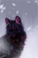 AT .:First Snow:. by WhiteSpiritWolf