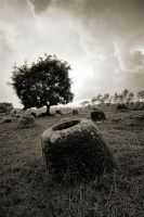 Plain Of Jars by stinebamse