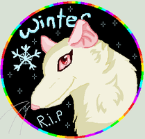 R.I.P Winter by WolfieMoonscar