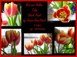 Red 'n Yellow Tulip Pack by Jenna-RoseStock