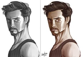 Robert downey jr concept by Sommum
