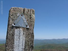 On The Trail at Max Patch by hotrod2001