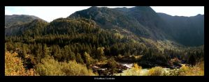 Fraser River Canyon by bukephalas