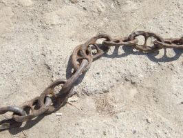 Chain by Caltha-stock