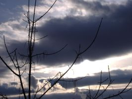 4_5_08clouds2 by cloudenvy000