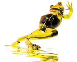 Escape-Yellow Frog by Digital-Virtuosity