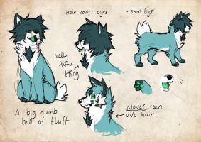 skye character design sheet by 3Dmutt