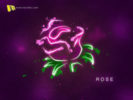 Rose by malshan