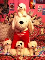 Santa Paws, Noble, Hope, jingle, and Charity Plush by BeautifulHusky