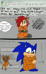 ASK Sonic + Sally 2 by MightyMorg