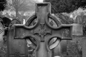 Spider Web on Gravestone by Slinkyfink