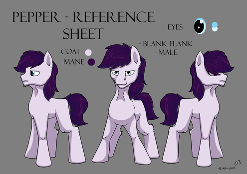 OC Reference Sheet by CodePepper