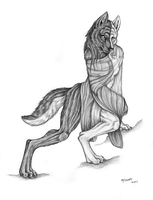 Divided Wolf sketch by Qzurr