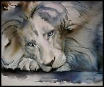 When lions cry by Ceridwens-gallery