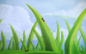 Ladybugs by John-Boyer