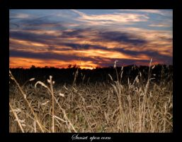 A Sunset upon corn by Stoffleader