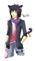 For Jadist - Kaito by Quisik