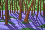 Bluebells Through the Trees by EJPendlebury