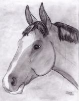 Plum Pretty Sketch by BamaBelle2012