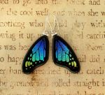 Blue Green Mix Wing Earrings by FusedElegance