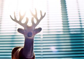 deer light by LTKJJ