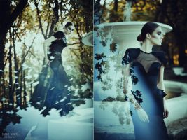 Sublimation. The Black Swan by BirdSophieBlack
