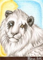 White lion by ElorenLeianor