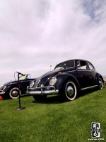 Max The Love Bug by Swanee3