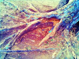 Nature's Roots by Centauri54