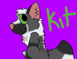 kit by Insanitywoolf