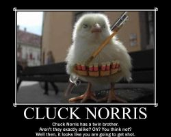 Cluck Norris by AYF100