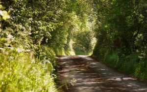 Slaghtneill Country road by younghappy
