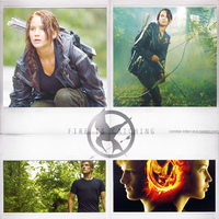 The Hunger Games by Evey-V