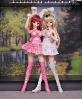 Dollfie Dream Bunnies Fullview by Wolfheinrich