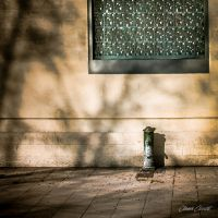 Shades of a thirst by OlivierAccart