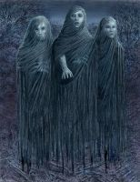 The Dead Witches by mccracken